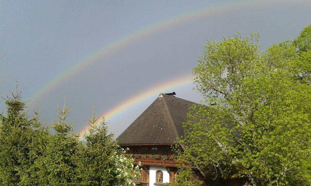Regenbogen über Fischbach